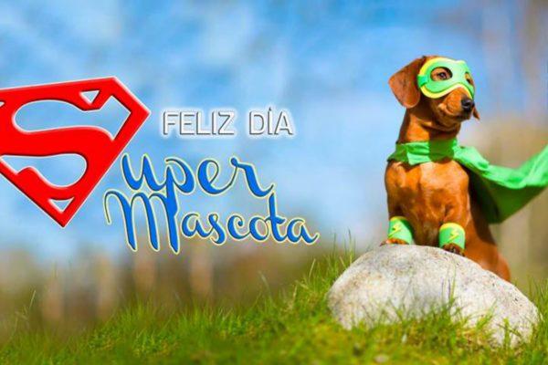 Día de tu Súper Mascota | Parque Maria Reich