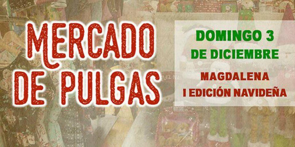 Mercado de Pulgas | Magdalena I Edición Navideña