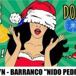 Feria Cambalache 17 de Diciembre en Barranco